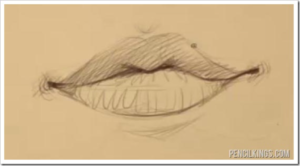 300x166 How To Draw The Male And Female Mouth