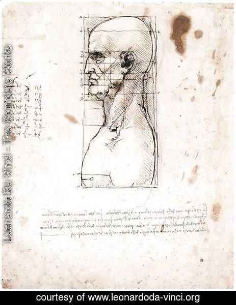 463x600 Leonardo Da Vinci