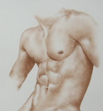 349x377 Male Nude Art Order Male Nude Handmade Nude Erotic Drawing