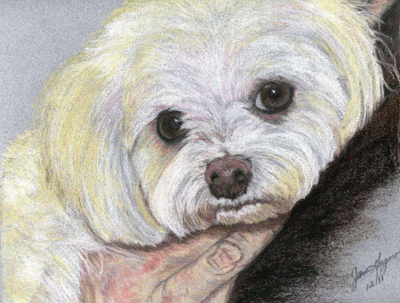1500x1135 Custom Dog Portrait, Custom Pet Portrait From Photo, Pastel