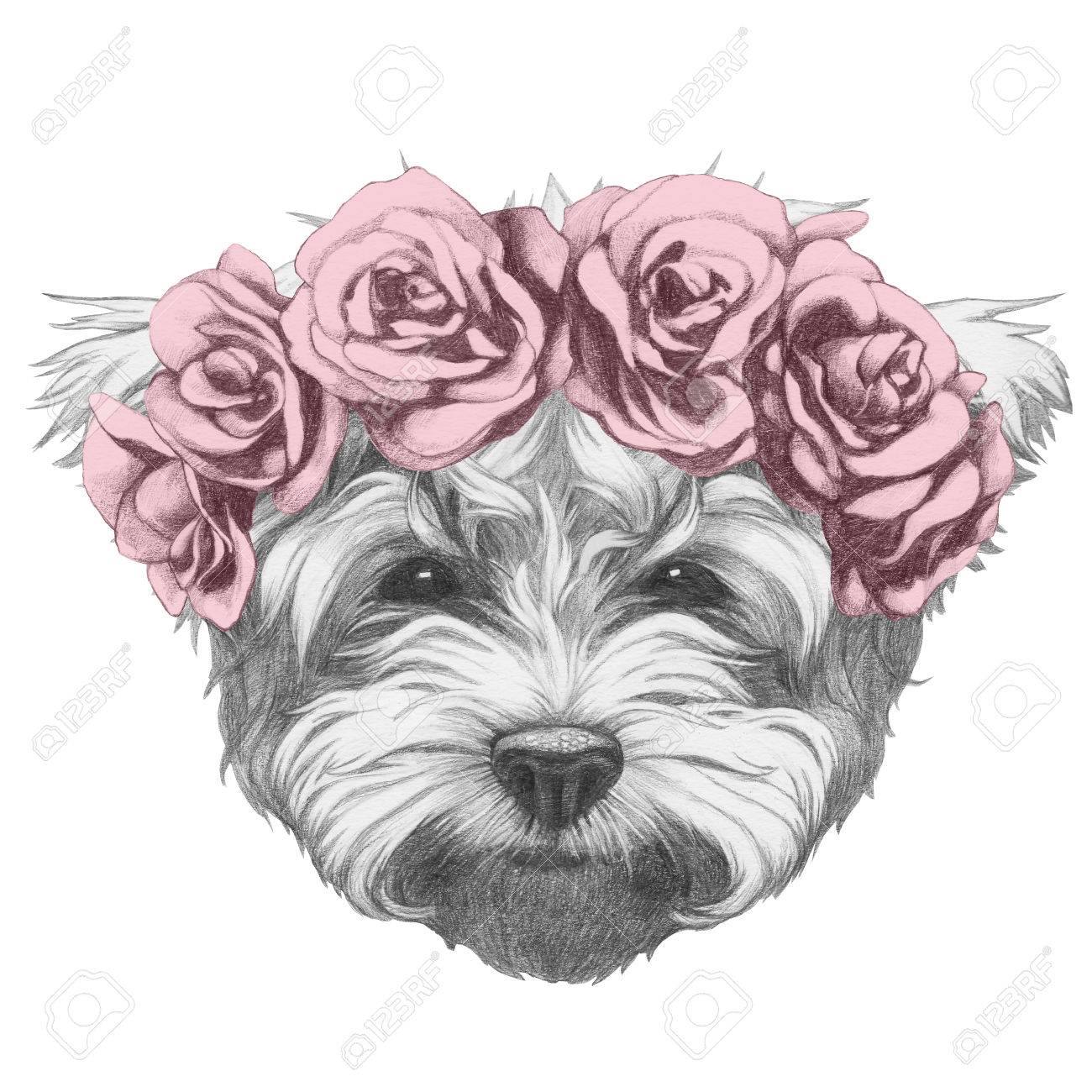 1300x1300 Original Drawing Of Maltese Poodle With Floral Head Wreath