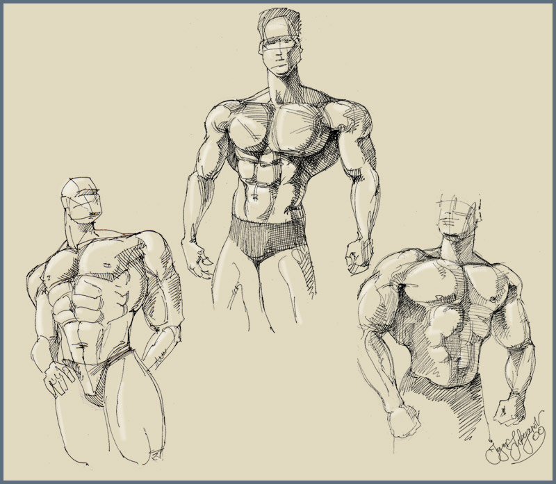 800x697 Body Men Sketch
