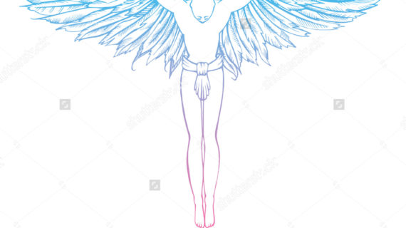 570x320 Man With Wings Drawing Angel Man Wings Feathers Manbird Line Stock