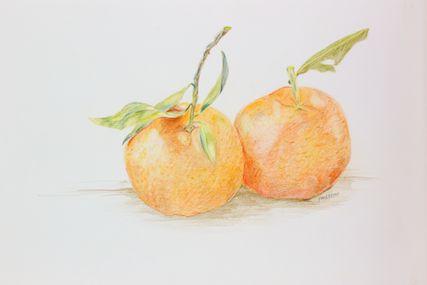 427x285 Mandarin Orange Or Tangerine (Citrus Tangerina) Arts Books