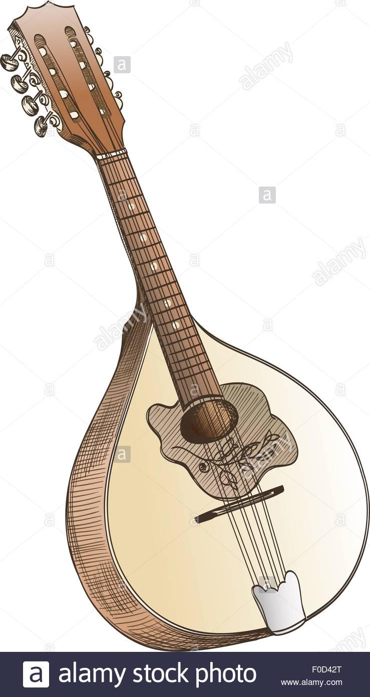 739x1390 Mandolin Hand Drawing On White Stock Vector Art Amp Illustration