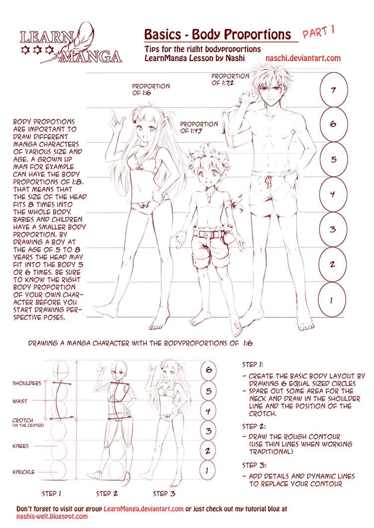 752x1063 Learn Manga Body Proportions By Naschi Illustration