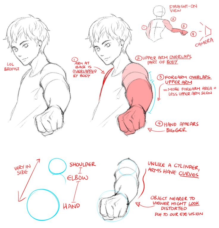 736x768 Drawing Tutorials Manga 39 Best Wma Tutorials Character Images