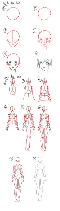 236x824 I Bet This Will Really Help With My Anime Drawings.
