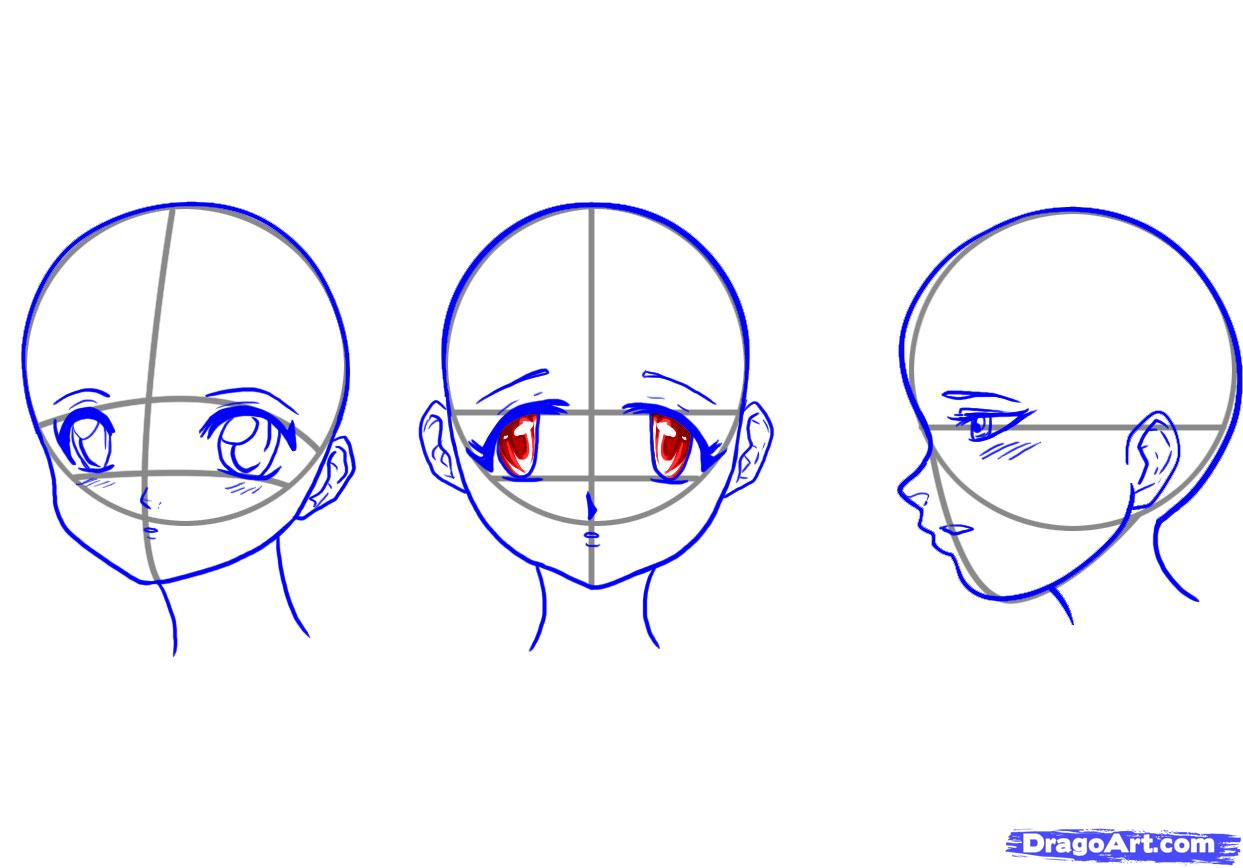 1243x868 Drawing Anime Face Shapes How To Draw Manga Head Shape Amp Facial