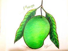 236x177 How To Draw A Mango