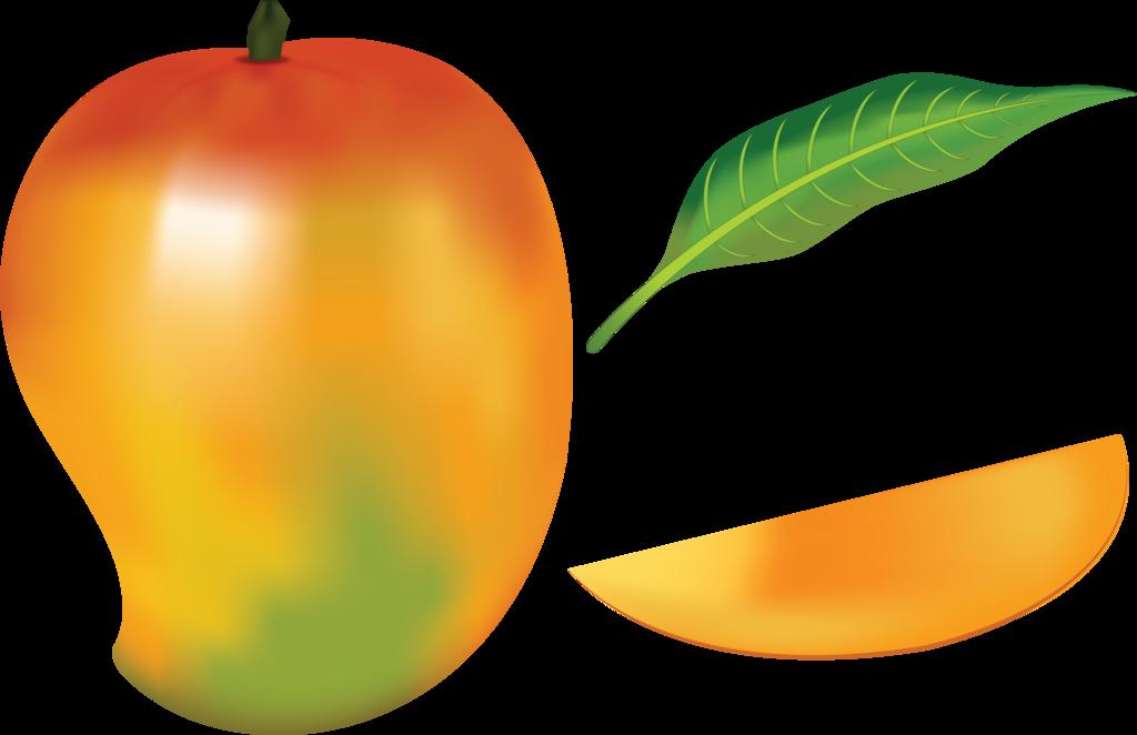 1024x662 Mango Fruit By Navdbest
