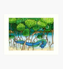 210x230 Mangrove Drawing Art Prints Redbubble