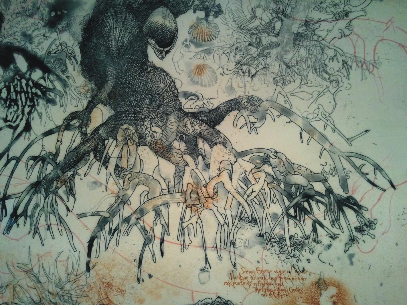 1422x1066 Mangrove Roots