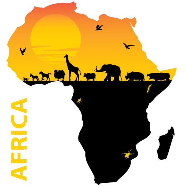 615x615 Map Of The Continent Of Africa Where SO Many Animals, (that Are