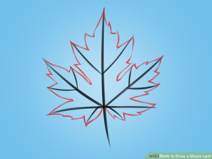 728x546 Draw A Maple Leaf Leaves, Doodles And Drawings