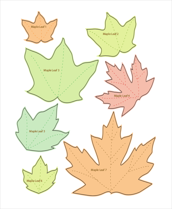 Maple Leaf Drawing Template At GetDrawings