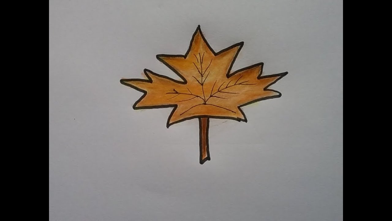 1280x720 How To Draw A Maple Leaf , Autumn Leaf Drawing, Colour Pencil