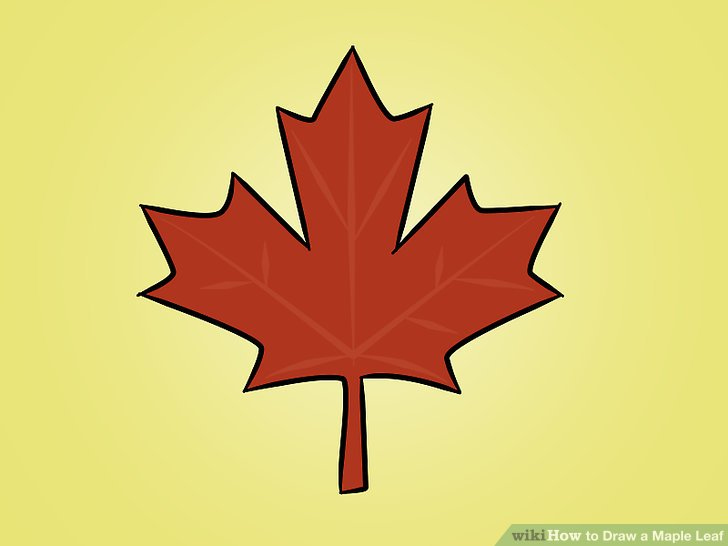 728x546 How To Draw A Maple Leaf 12 Steps (With Pictures)