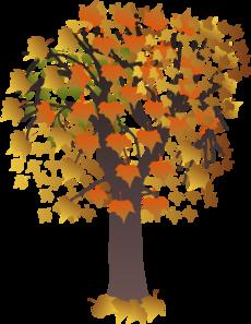 230x297 Maple Tree Clip Art