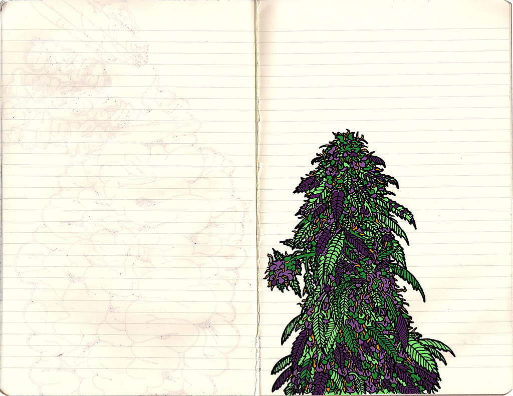 1024x791 Marijuana Drawing Sort Graffiti Styled Drawing
