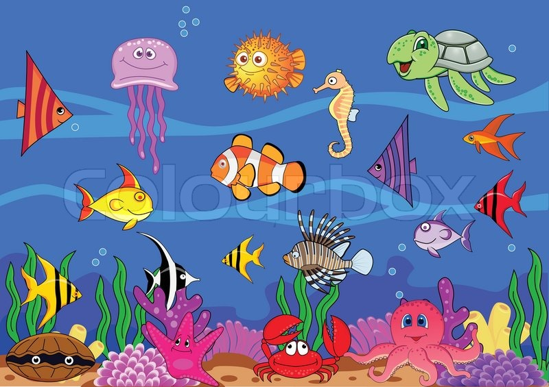 800x565 Sea Life Stock Vector Colourbox