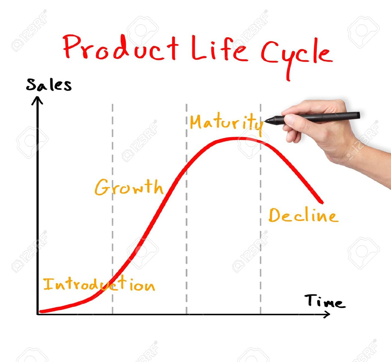 1300x1203 Business Hand Drawing Product Life Cycle Chart Marketing Concept