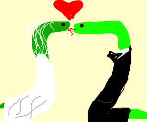 300x250 Two Snakes Getting Married