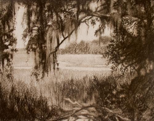 500x393 Jekyll Island Marsh (Jan Blencowe)