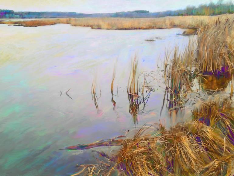 770x578 Saatchi Art Mendon Ponds Marsh Drawing By Cathryn R Leyland