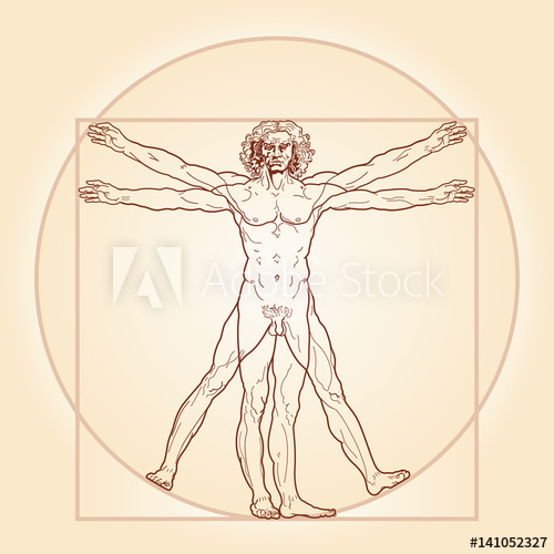 500x500 Homo Vitruviano. The Vitruvian Man Leonardo's Man. Detailed