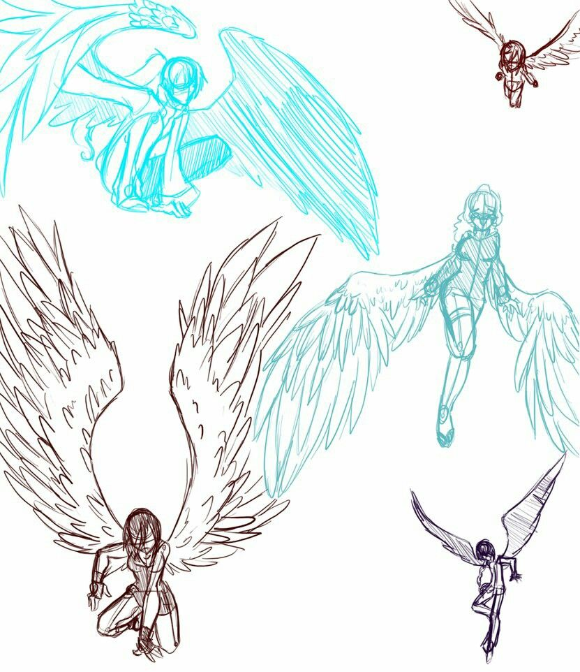 831x962 Wings Reference And Pose Tutorials Pose, Drawings