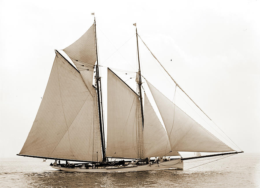 900x650 Mayflower, Mayflower Schooner, Yachts Drawing By Litz Collection