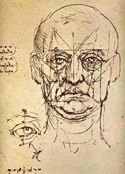 433x600 Drawing Basics Measuring Facial Features