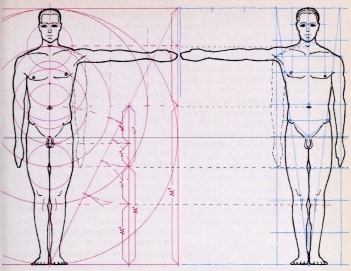 1200x928 Drawing A Human Figure In Correct Measurements And Proportions