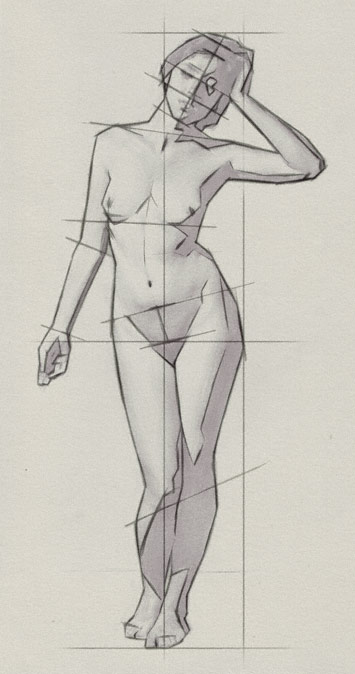 355x674 Drawing The Proportions Of The Human Body