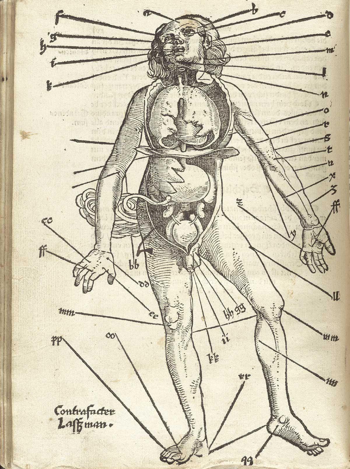1200x1607 Gersdorff, Hans Von. Der Wundartzney Newlich Getruckt