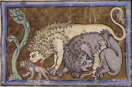 561x371 Medieval Bestiary Lion