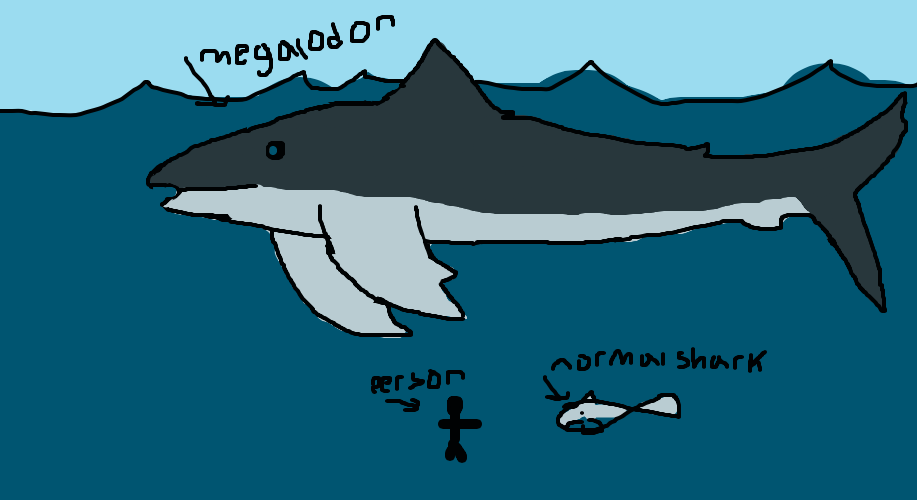 917x500 Do You Believe Megalodon Still Swims Out There By Shark D0g