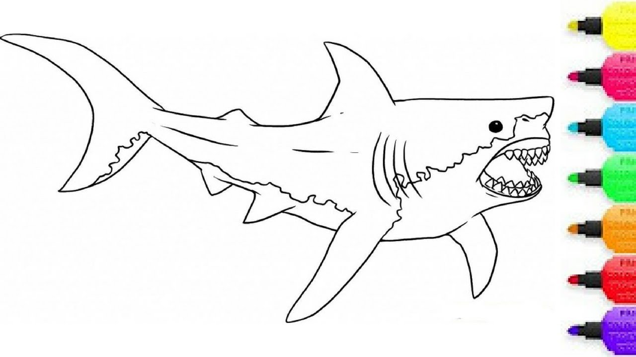 1280x720 How To Draw Megalodon Drawing Megalodon From Hungry Shark World
