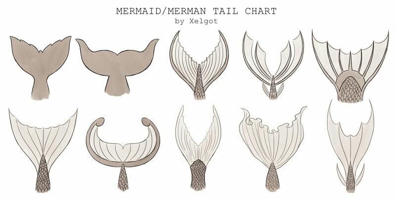 800x403 Mythology Study Art Styles Mythology, Mermaid