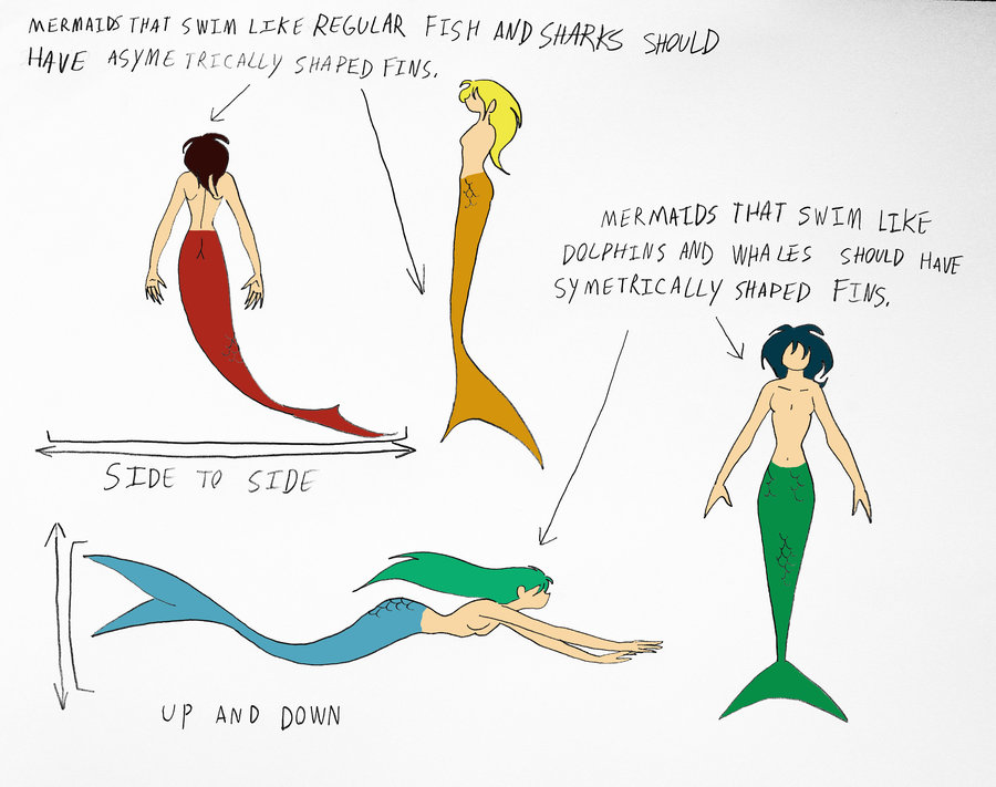 900x711 Guide To Properly Drawing Mermaids Pg.8 By Jakegothicsnake
