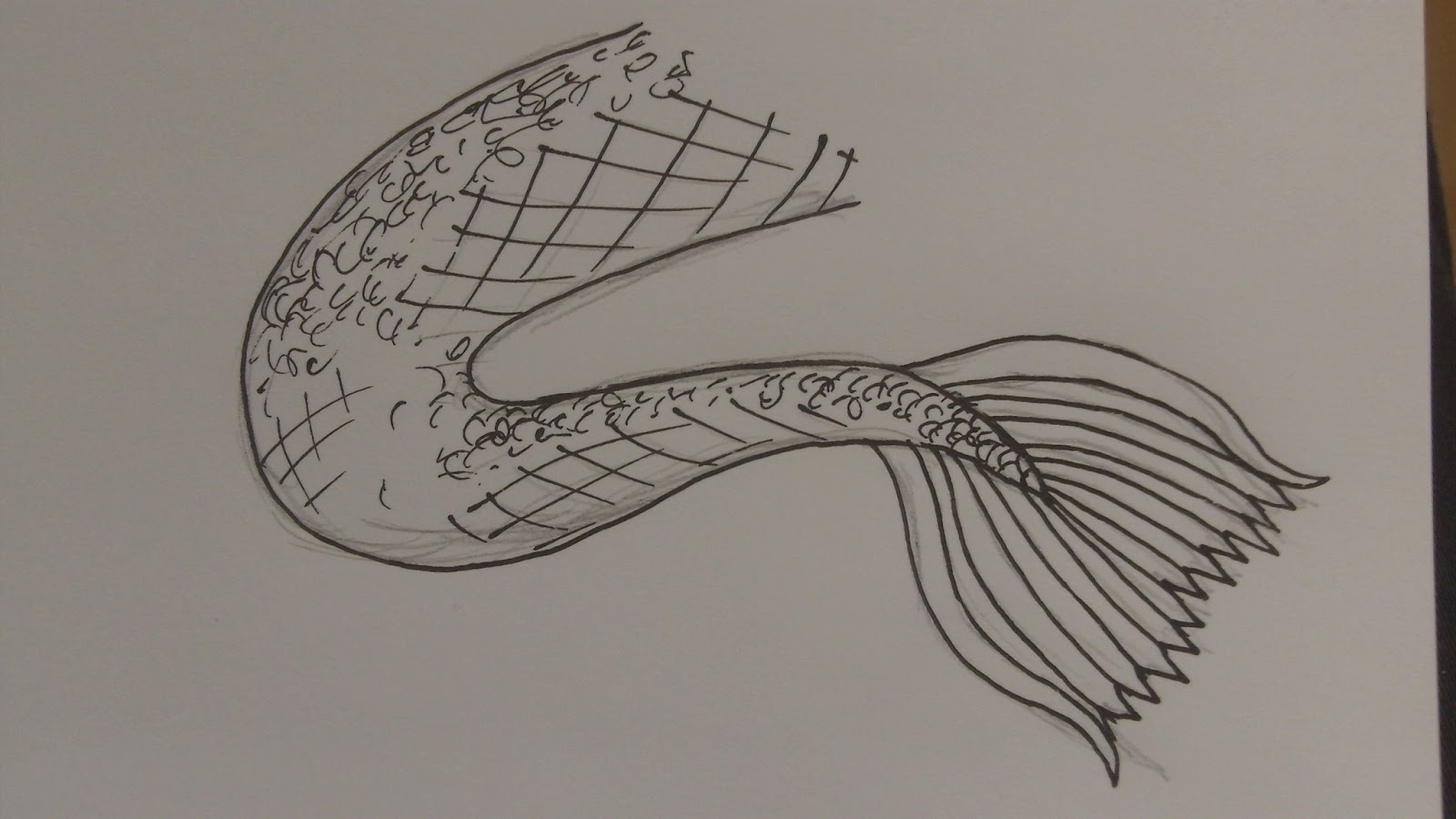 1600x900 Best Photos Of Mermaid Tail Drawing