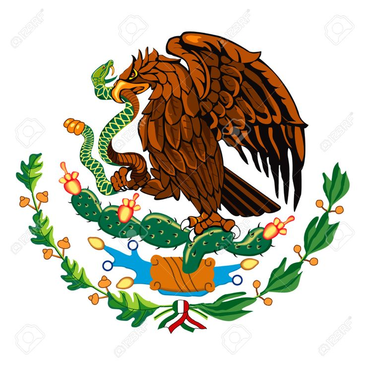 Mexican Eagle Drawing At Getdrawings Com Free For Personal Use
