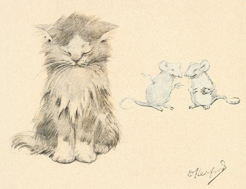 500x384 Cat Amp Mice Drawing