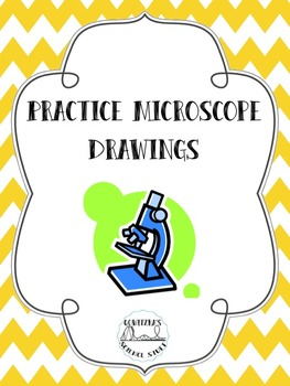 263x350 Microscope Drawings Teaching Resources Teachers Pay Teachers