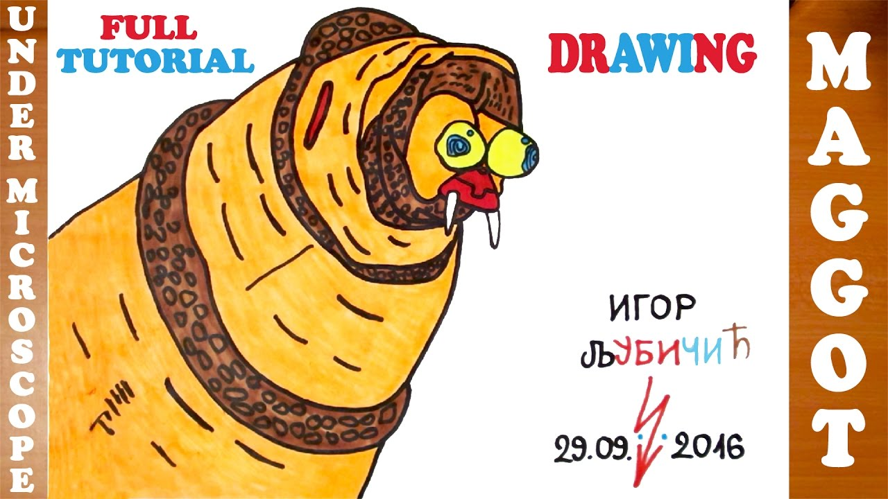 1280x720 How To Draw A Maggot Under A Microscope Step By Step Easy For Kids