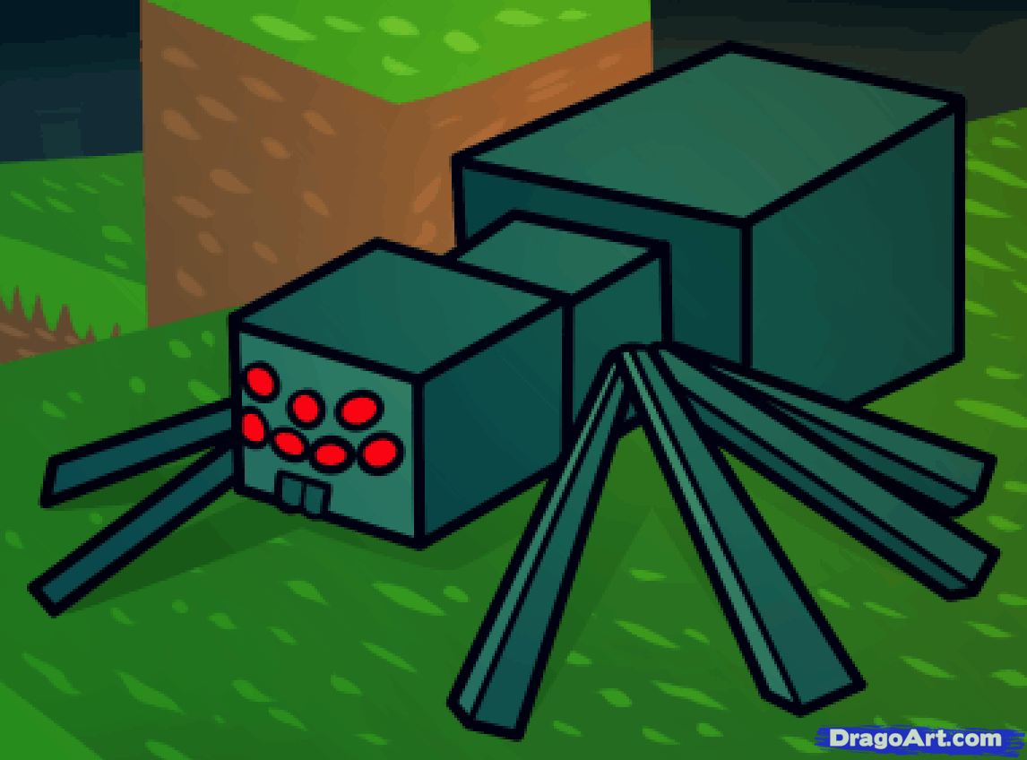 1146x848 How To Draw A Minecraft Spider, Minecraft Cave Spider, Step By