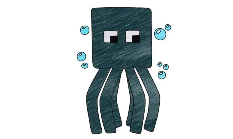 800x480 How To Draw The Squid