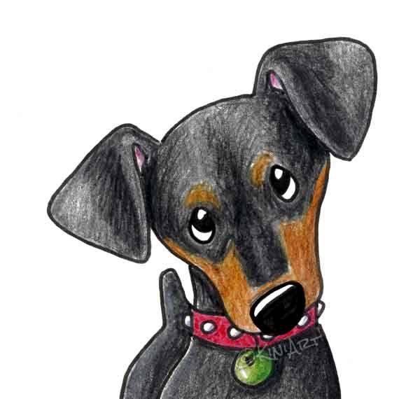 570x570 Mini Pinscher Original Dog Art Drawing Matted Mini Pinscher, Dog
