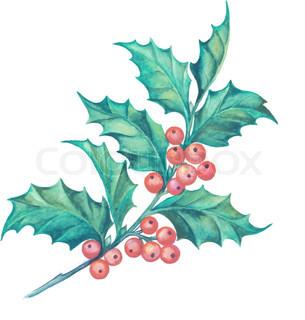 305x320 Christmas Mistletoe Branch Pencil Drawing. Vector Illustration
